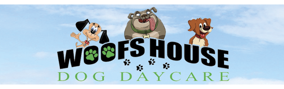 Woofs House Dog Daycare